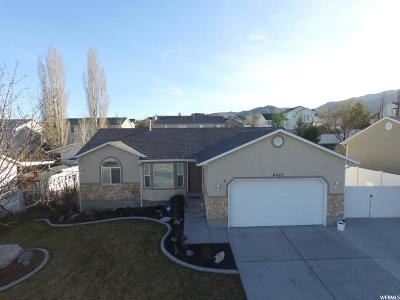 Riverton Single Family Home For Sale: 4923 W Chilly Peak Dr S
