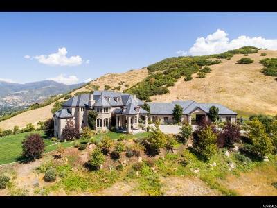 Bountiful Single Family Home For Sale: 4101 S Hidden Ridge Cir
