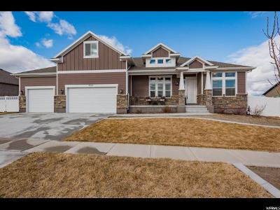 Riverton Single Family Home For Sale: 3938 W Deer Mountain Dr.