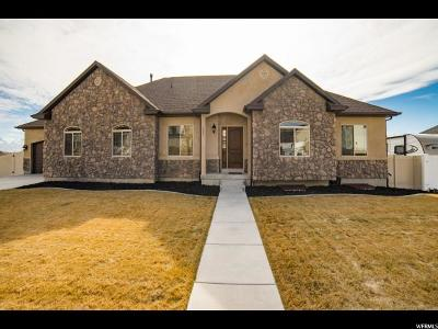 Lehi Single Family Home For Sale: 1047 W 3425 N