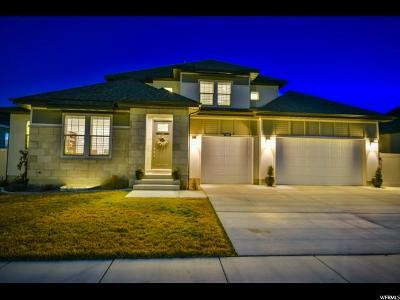 Draper Single Family Home For Sale: 460 E Juneberry St