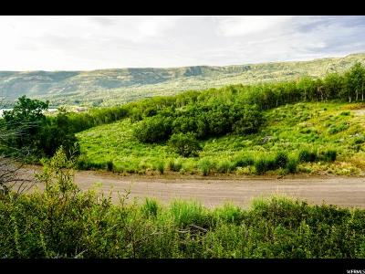 Wasatch County Residential Lots & Land For Sale: 10135 E Clubhouse Rd