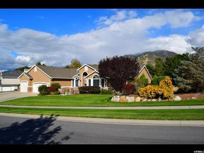 Draper Single Family Home For Sale: 13905 S Corner Ridge Ct E