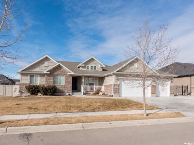 Lehi Single Family Home For Sale: 351 E Clay Ln Ln