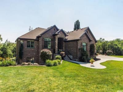 Ogden Single Family Home For Sale: 6226 S Woodland Dr