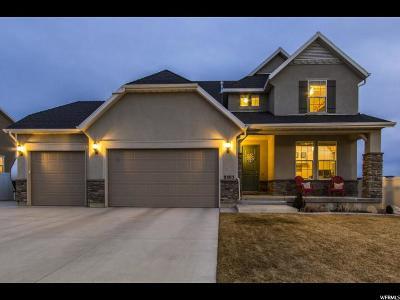 West Jordan Single Family Home For Sale: 8503 S Otter Creek Dr W