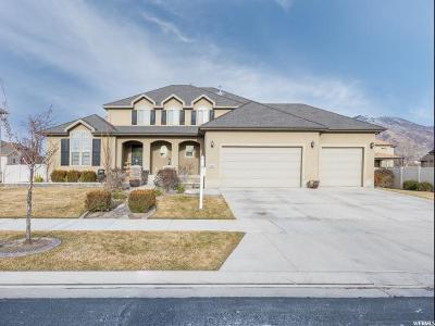 Draper Single Family Home For Sale: 13261 S Ashwood Glen Way E