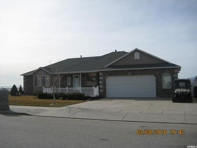 Perry Single Family Home For Sale: 2940 S 800 W