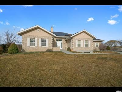 Erda Single Family Home For Sale: 1615 E Country Ln N
