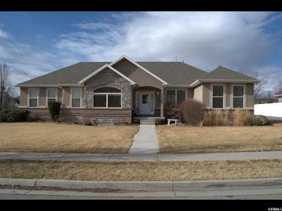 American Fork Single Family Home For Sale: 1197 N 1190 E