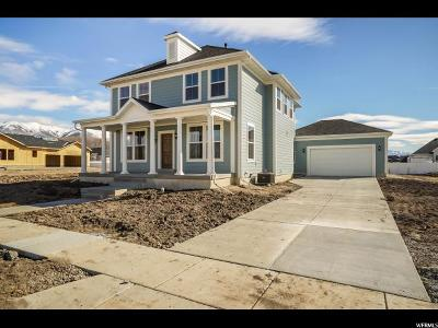 Kaysville Single Family Home For Sale: 2089 W Grassy Plain Dr N #412