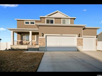 Provo Single Family Home For Sale: 1594 S 620 W