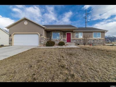 Single Family Home For Sale: 1256 N 100 E