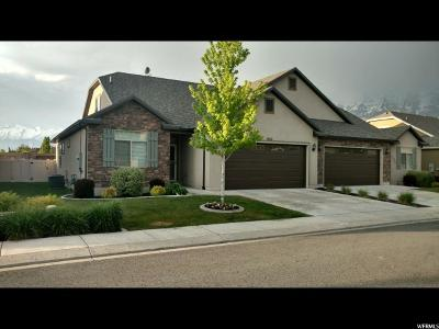 Lindon Single Family Home For Sale: 1582 W 480 N