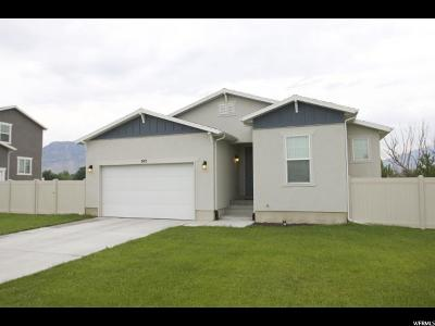 American Fork Single Family Home For Sale: 743 S 120 W