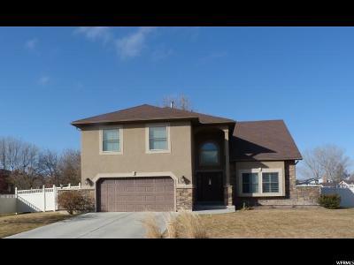 Tremonton Single Family Home For Sale: 211 S Hazel Pl E