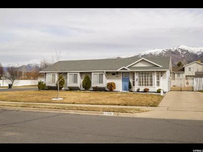 Kaysville Single Family Home For Sale: 750 N 350 W