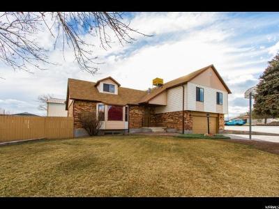 West Jordan Single Family Home For Sale: 3987 W 8010 S