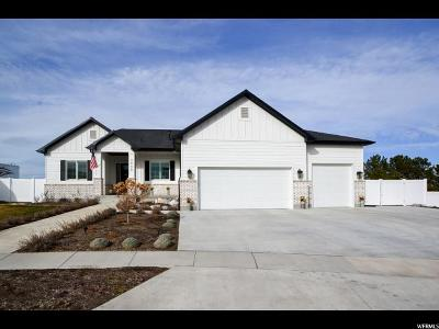 Riverton Single Family Home For Sale: 3908 W Deer Mountain Dr S