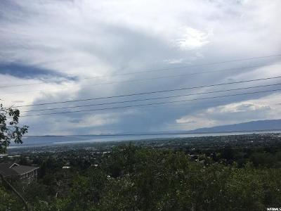 Provo Residential Lots & Land For Sale: 3060 N Piute Dr