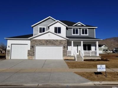 Mapleton Single Family Home For Sale: 47 E 530 N #LOT 9