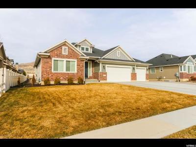 Lehi Single Family Home For Sale: 343 E Clubview Ln