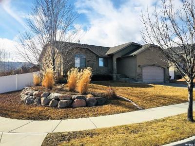 Herriman Single Family Home For Sale: 5381 W Little Water Peak Dr