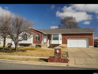 Clinton Single Family Home For Sale: 2068 N 1350 W