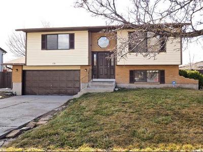 Salt Lake City Single Family Home For Sale: 1923 W Springfield Rd N