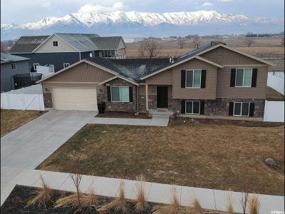Nibley Single Family Home For Sale: 2771 S 1150 W