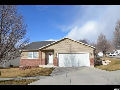 Ogden Single Family Home For Sale: 1060 N Sharp Mountain Cir E