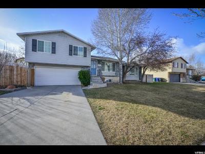 West Jordan Single Family Home For Sale: 8724 S 1405 W