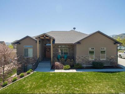 Wellsville Single Family Home For Sale: 344 W 285 N