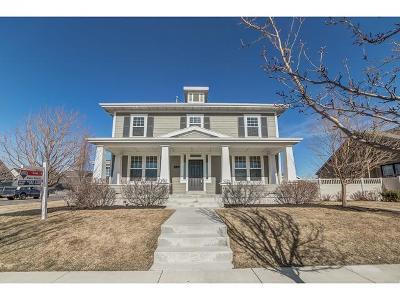 South Jordan Single Family Home For Sale: 4142 W Open Crest Dr S