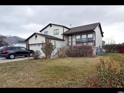 Layton Single Family Home For Sale: 778 E 700 S