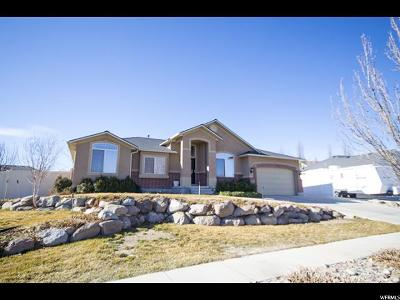 West Jordan Single Family Home For Sale: 5089 W Holly Lily Ln