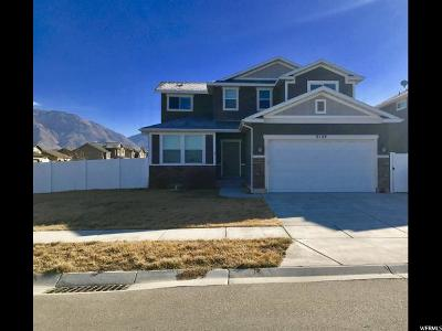 Weber County Single Family Home For Sale: 2124 N 925 W