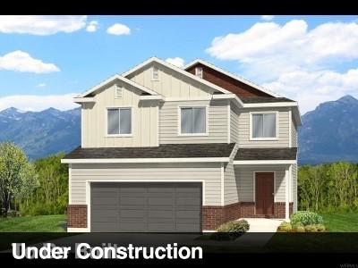 Weber County Single Family Home For Sale: 4643 S Park Lane Dr