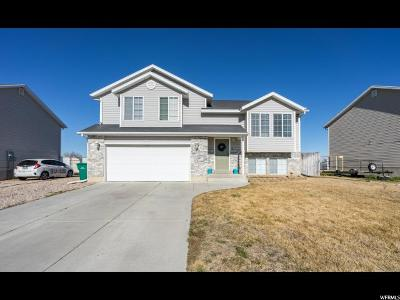 Weber County Single Family Home For Sale: 5061 S 4200 W