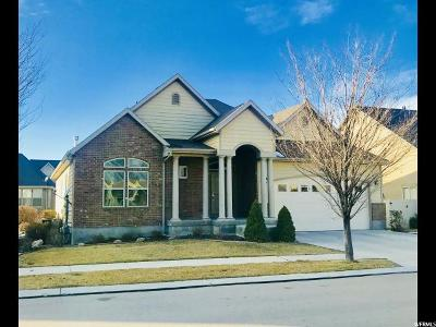 Mapleton Single Family Home For Sale: 904 S Sego Lily Way W