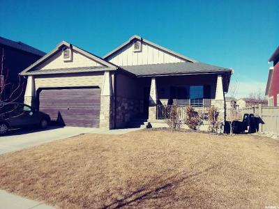 Eagle Mountain Single Family Home For Sale: 3841 E Turnberry Rd N
