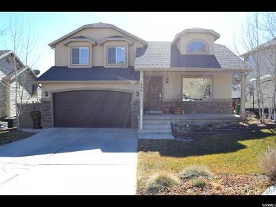 Eagle Mountain Single Family Home For Sale: 3946 E Eagle Top Ct