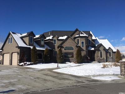 Tremonton Single Family Home For Sale: 486 E 100 N