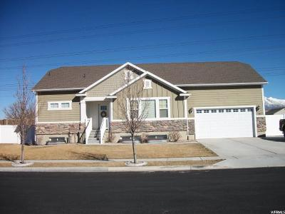 Lehi Single Family Home For Sale: 782 W 1250 S