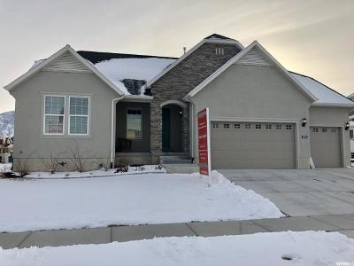 Stansbury Park Single Family Home For Sale: 5794 N Parkview Dr