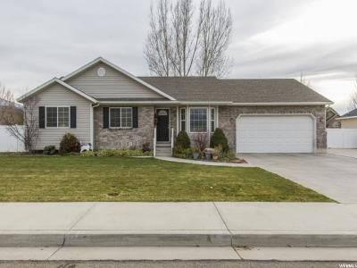 Springville Single Family Home For Sale: 527 W 200 S