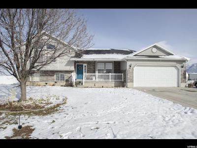 Brigham City Single Family Home For Sale: 3080 W Forest St