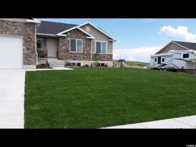 Tremonton Single Family Home For Sale: 2724 W Valley View Dr