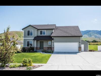 Hyde Park Single Family Home For Sale: 418 N 750 E