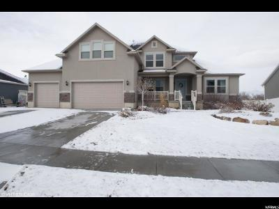 Lehi Single Family Home For Sale: 252 W 1200 S